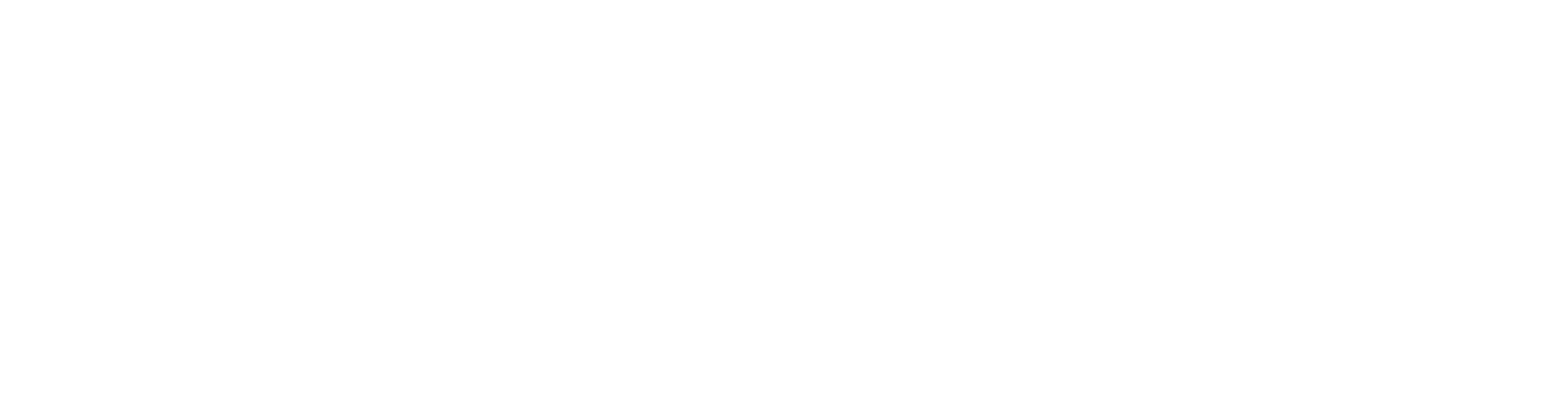 Snooze Mattress Co. Logo